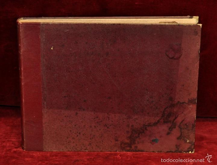 Coleccionismo Cromos troquelados antiguos: INTERESANTE Y CURIOSO ALBUM ARTESANAL DE BIOLOGIA Y ZOOLOGIA DE PRINCIPIOS DEL SIGLO XX - Foto 8 - 58391490