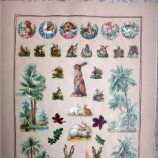 Coleccionismo Cromos troquelados antiguos: CROMOS TROQUELADOS, SIGLO XIX, LAMINA TIPO CARTEL, CONEJOS ANIMALES , ORIGINAL . Lote 66847450