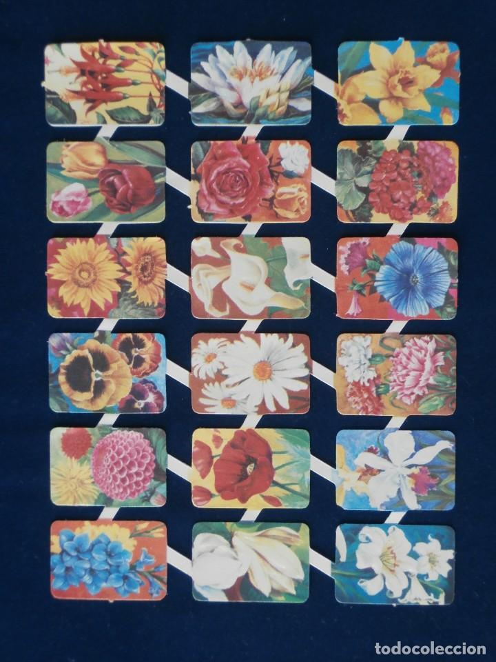LAMINA CROMOS TROQUELADOS ESPAÑOLES MAVES 8 (Coleccionismo - Cromos y Álbumes - Cromos Troquelados)