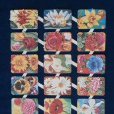 Coleccionismo Cromos troquelados antiguos: LAMINA CROMOS TROQUELADOS ESPAÑOLES MAVES 8. Lote 206946292