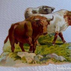 Coleccionismo Cromos troquelados antiguos: TOROS/TAUROMAQUIA. CROMO ANTIGUO DE CHOCOLATE AMERICANO TROQUELADO/DE PICAR. CON RELIEVE. Lote 90370324