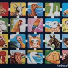 Coleccionismo Cromos troquelados antiguos: LAMINA CROMOS TROQUELADOS ESPAÑOLES EDIVAS 29. ANIMALES DIVERSOS. Lote 245482345