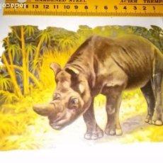 Coleccionismo Cromos troquelados antiguos: GRANDE - GRAN CROMO DE PALMA GIJON ANTIGUO ORIGINAL TROQUELADO NATURALEZA ANIMAL RINOCERONTE. Lote 99170791