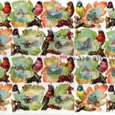 Coleccionismo Cromos troquelados antiguos: HOJA COMPLETA 20 CROMOS TROQUELADOS DE PAJAROS PUBLICIDAD CHOCOLATES MONCAU BARCELONA. Lote 133975514