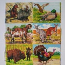 Coleccionismo Cromos troquelados antiguos: GIN. LÁMINA DE CROMOS TROQUELADOS MLP 1621 - ANIMALES (PARTE IZQUIERDA). Lote 163831258
