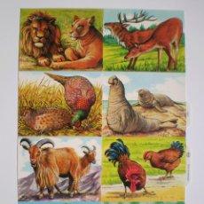 Coleccionismo Cromos troquelados antiguos: GIN. LÁMINA DE CROMOS TROQUELADOS MLP 1621 - ANIMALES (PARTE DERECHA). Lote 163831314