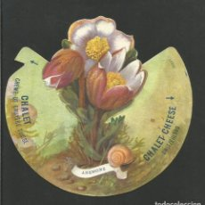 Coleccionismo Cromos troquelados antiguos: ANEMONE-Nº 5-FLORA ALPINA-CROMO PUBLICIDAD QUESO CHALET CHEESE-VER REVERSO-(V-17.502). Lote 175446179