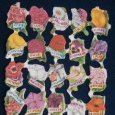 Coleccionismo Cromos troquelados antiguos: LAMINA CROMOS TROQUELADOS ESPAÑOLES FHER-6. FLORES CON NOMBRES DE FLORES. Lote 195517783