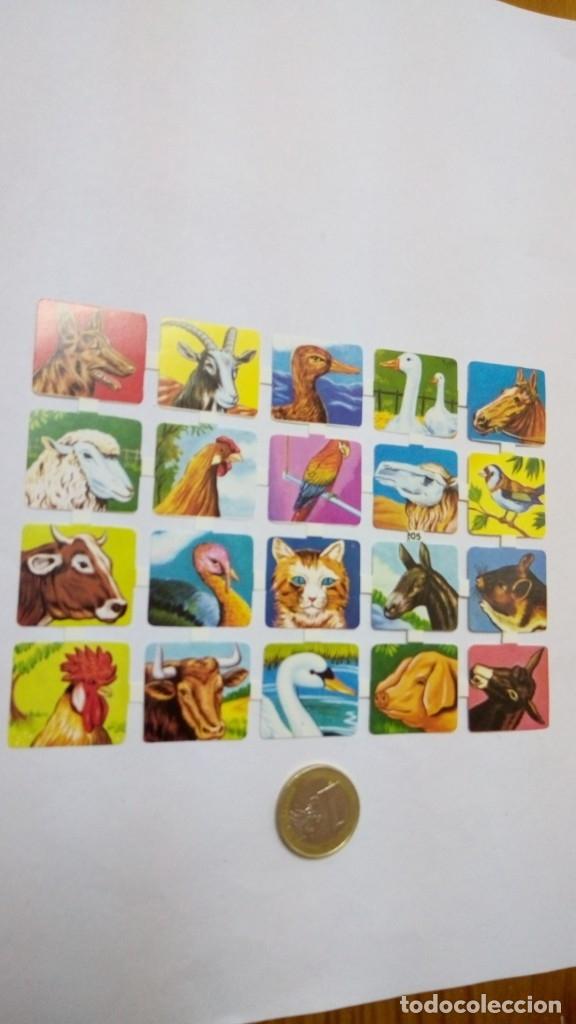 Coleccionismo Cromos troquelados antiguos: cromos troquelados de coleccion , ver fotos , se admiten ofertas - Foto 3 - 182651863