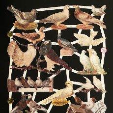 Coleccionismo Cromos troquelados antiguos: RR. LAMINA DE CROMOS TROQUELADOS CON BRILLO Y RELIEVE EF - 7299 - PALOMAS. Lote 186361266