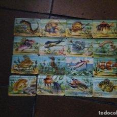 Coleccionismo Cromos troquelados antiguos: 16 CROMOS TROQUELADOS ANTIGUOS DE PECES. . Lote 194882645