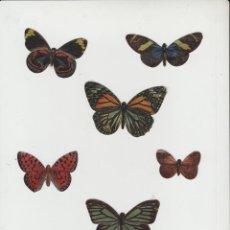 Coleccionismo Cromos troquelados antiguos: LOTE X-CROMOS TROQUELADOS LUMINISCENTES MARIPOSAS PANRICO. Lote 196731222