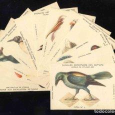 Coleccionismo Cromos troquelados antiguos: COLECCION COMPLETA DE 12 CROMOS ANIMALES RECORTADOS (ED.BARSAL, J.BARGUÑO, SERIE 3) (VER FOTO ADIC). Lote 204168183