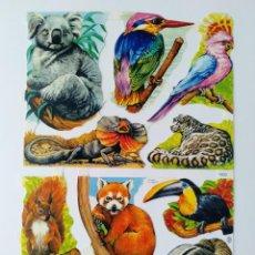 Coleccionismo Cromos troquelados antiguos: GIN. LÁMINA DE CROMOS TROQUELADOS MLP 1603 - ANIMALES EXÓTICOS. Lote 224295143
