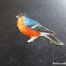 Coleccionismo Cromos troquelados antiguos: PAJARO CROMO TROQUELADO SIGLO XIX. Lote 234518930