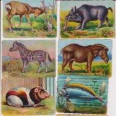 Coleccionismo Cromos troquelados antiguos: LOTE DE 10 CROMOS TROQUELADOS (6,5X9) ANIMALES. SIGLO XX. Lote 295658273