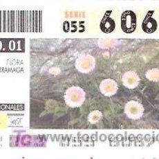 Cupones ONCE: ONCE - PARQUES NACIONALES - SIERRA NEVADA - FLORA ZARRAMAGA - GRANADA - 21 AGO 01 - 60674. Lote 11631224