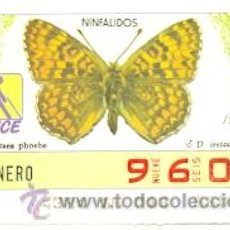 Cupones ONCE: 8-870113. CUPON ONCE 13-01-87. MARIPOSAS. NINFALIDOS D. CENTAURA. Lote 33227194