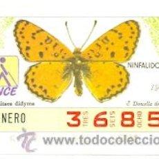 Cupones ONCE: 8-870115. CUPON ONCE DE 15-01-87. MARIPOSAS. NINFALIDOS. DONCELLA TIMIDA. Lote 33227248