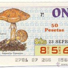 Cupones ONCE: CUPÓN ONCE.- 23 DE SEPTIEMBRE DE 1987.-. Lote 45461284