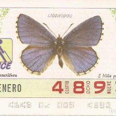 CUPON ONCE - 4893 - SORTEO 05 ENERO 1987 - LICENIDOS