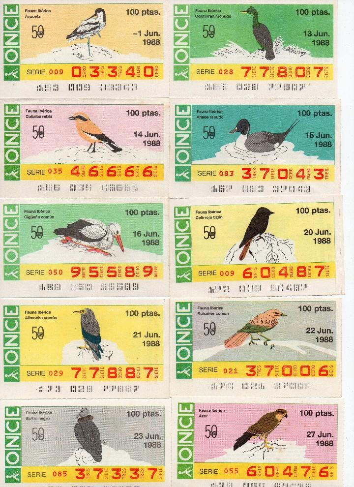 Cupones ONCE: cupon once 1988, serie aves fauna ibérica, 97 cupones completa con el 2 de junio - Foto 3 - 103139647