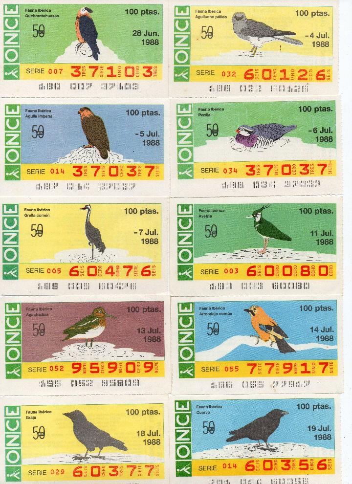Cupones ONCE: cupon once 1988, serie aves fauna ibérica, 97 cupones completa con el 2 de junio - Foto 4 - 103139647