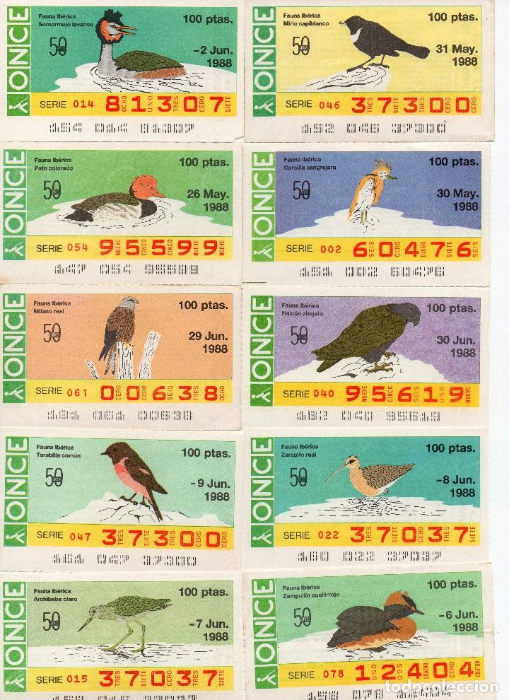 CUPON ONCE 1988, SERIE AVES FAUNA IBERICA, 97 CUPONES COMPLETA (Coleccionismo - Lotería - Cupones ONCE)