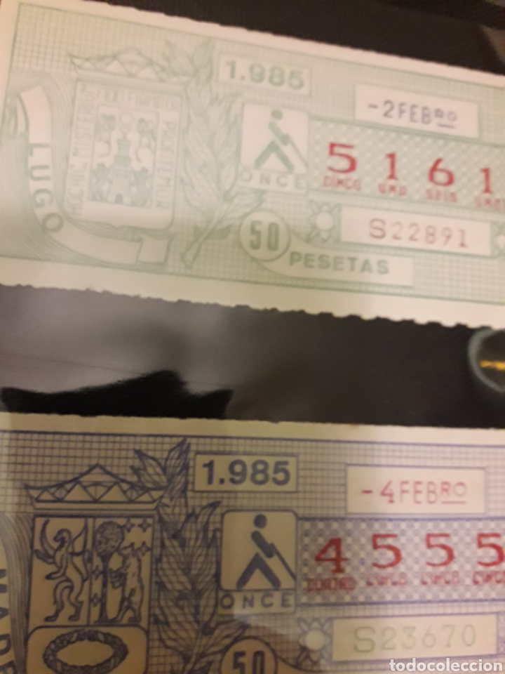 Cupones ONCE: Lote loteria pro ciegos Febrero 1984 - Foto 2 - 194890530