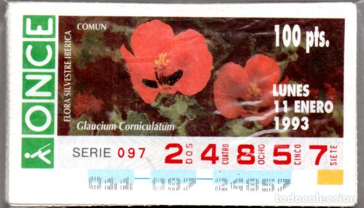 55 CUPONES DE LA ONCE DE FLORA SILVESTRE IBÉRICA - AÑO 1993 - VER FECHAS - (Coleccionismo - Lotería - Cupones ONCE)