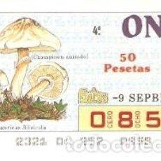 Cupones ONCE: CUPÓN ONCE DE 9-9-87. SETAS. CHAMPINON ANISADO. REF. 8-870909. Lote 210613525