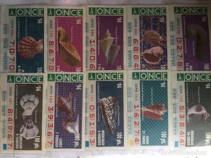 Cupones ONCE: CONCHAS GASTRÓPODAS 28 CUPONES - Foto 2 - 231223085