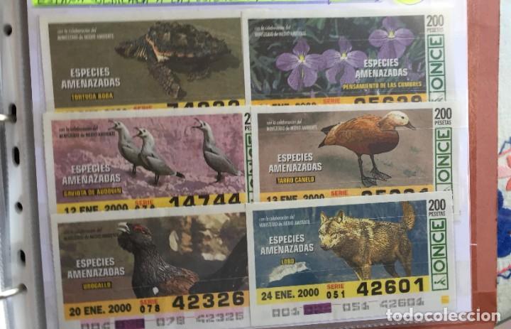 49 CUPONES DE LA ONCE ESPECIES AMENAZADAS (Coleccionismo - Lotería - Cupones ONCE)