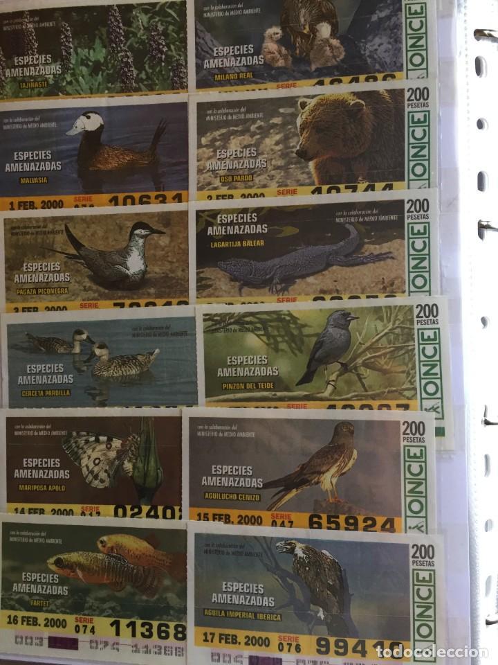 Cupones ONCE: 49 Cupones de la Once Especies Amenazadas - Foto 2 - 235537105