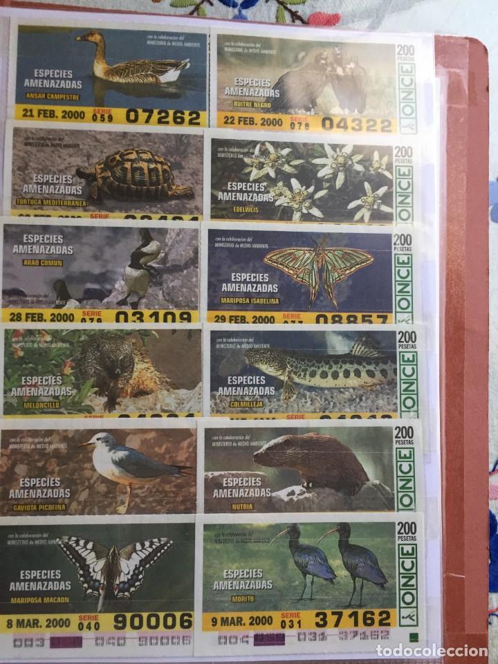 Cupones ONCE: 49 Cupones de la Once Especies Amenazadas - Foto 3 - 235537105