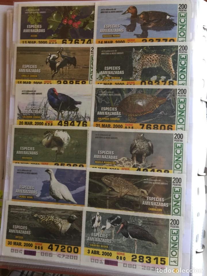 Cupones ONCE: 49 Cupones de la Once Especies Amenazadas - Foto 4 - 235537105