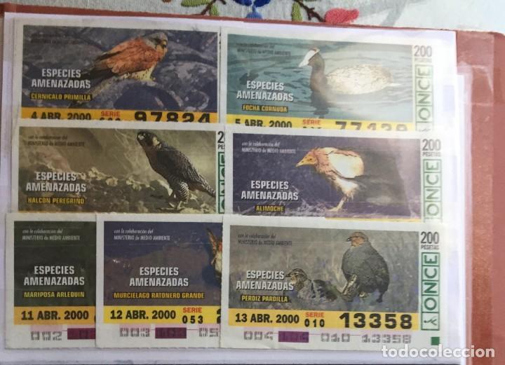 Cupones ONCE: 49 Cupones de la Once Especies Amenazadas - Foto 5 - 235537105