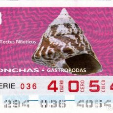 Cupones ONCE: 1993 - CUPON ONCE - CONCHAS - GASTROPODAS - TECTUS NILOTICUS - Nº 40541. Lote 245190085