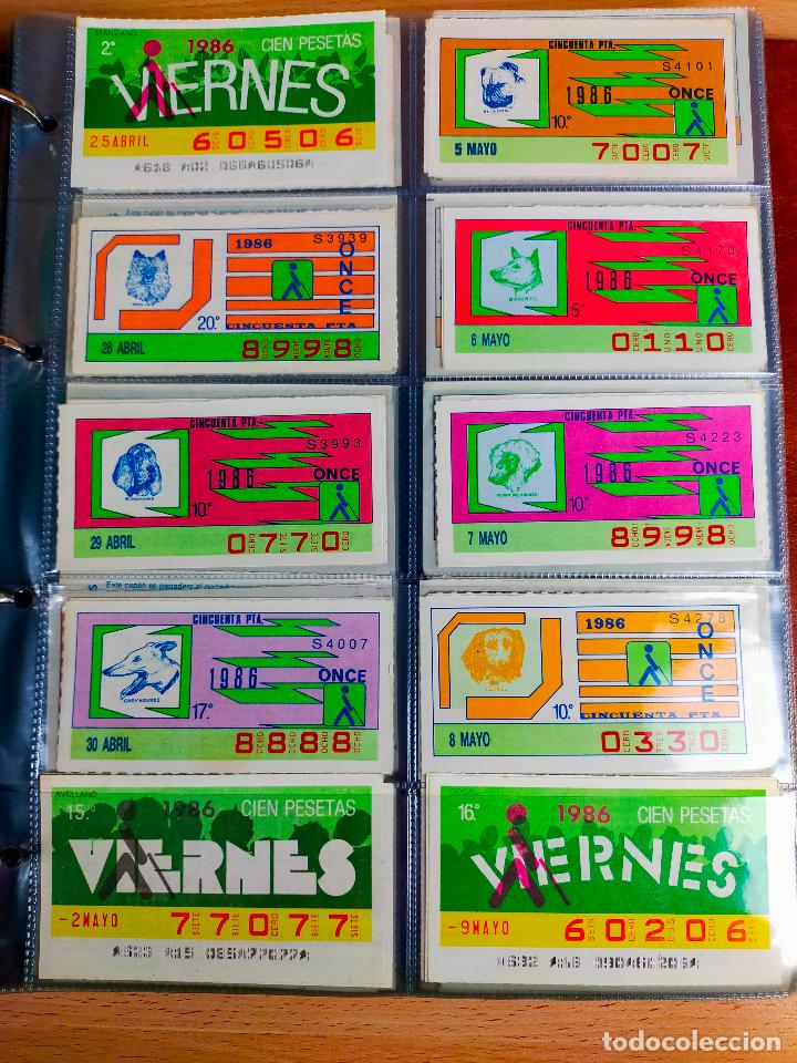Cupones ONCE: COLECCION COMPLETA CUPONES ONCE CAPICUAS 1984 AL 1987 UN CUPON POR SORTEO - Foto 69 - 265700389