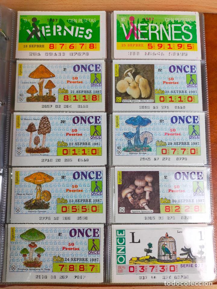Cupones ONCE: COLECCION COMPLETA CUPONES ONCE CAPICUAS 1984 AL 1987 UN CUPON POR SORTEO - Foto 136 - 265700389