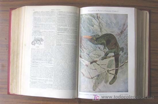Diccionarios antiguos: 3 tomos DICCIONARIO ENCICLOPÉDICO ABREVIADO ....Espasa Calpe Madrid 1935 - Foto 6 - 27481118