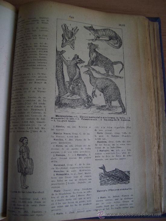 Diccionarios antiguos: NOVISIMO DICCIONARIO ENCICLOPEDICO, POPULAR ILUSTRADO DE LA LENGUA CASTELLANA. TOMO III. LITERACOMIC - Foto 5 - 27241212