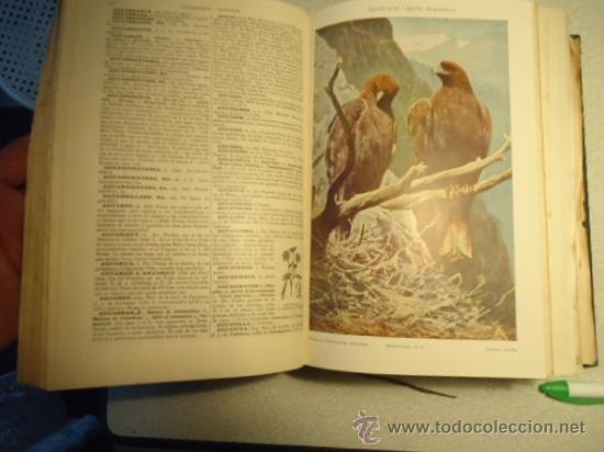 Diccionarios antiguos: DICCIONARIO ENCICLOPÉDICO ABREVIADO, TERCERA EDICIÓN ESPASA CALPE S.A 1935 - Foto 7 - 37971349