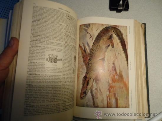 Diccionarios antiguos: DICCIONARIO ENCICLOPÉDICO ABREVIADO, TERCERA EDICIÓN ESPASA CALPE S.A 1935 - Foto 4 - 37971349