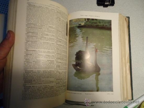 Diccionarios antiguos: DICCIONARIO ENCICLOPÉDICO ABREVIADO, TERCERA EDICIÓN ESPASA CALPE S.A 1935 - Foto 3 - 37971349