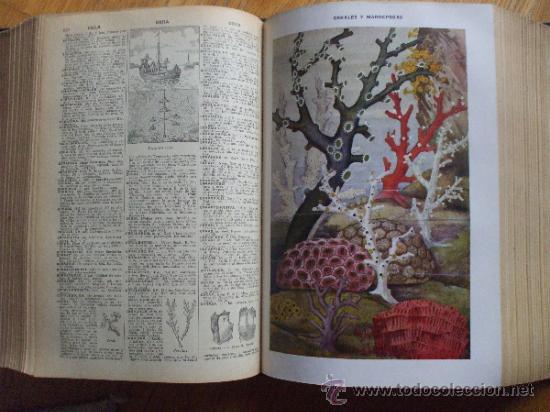 Diccionarios antiguos: DICCIONARIO ILUSTRADO SOPENA 1930. 2 tomos - Foto 7 - 38605883