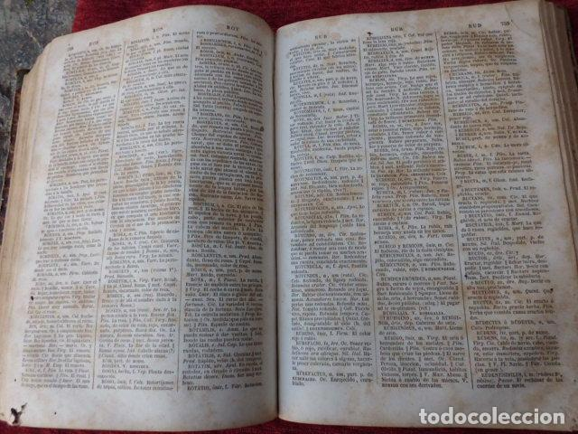 Diccionarios antiguos: Libro Valbuena diccionario Latino-Español 1854 B-106 - Foto 2 - 76253283