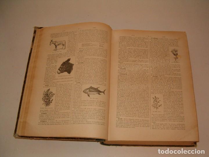 Diccionarios antiguos: Diccionario de la Vida Práctica, indispensable en el campo y en la ciudad. RM79303. - Foto 5 - 78414529
