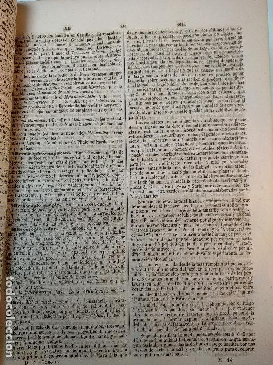 Diccionarios antiguos: DICCIONARIO DE FARMACIA DEL COLEGIO DE FARMACEUTICOS DE MADRID - VV. AA. - 2 TOMOS - MADRID - 1865 - - Foto 12 - 124012415