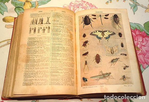 Diccionarios antiguos: Libro antiguo de 1899, Nuevo Diccionario Enciclopédico ilustrado de la Lengua Castellana, M.T.G. - Foto 2 - 140216650